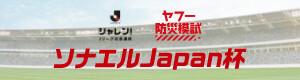 ヤフー防災模試 ソナエルJapan杯