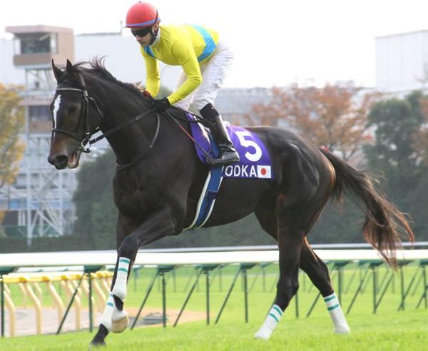 返し馬でルメールは「馬がすごく落ち着いていた」と、レースへの自信を深めていた