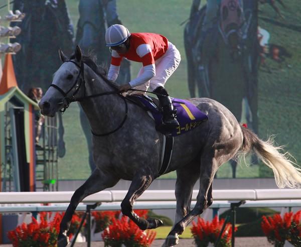「皐月賞馬として強い競馬を見せたかった」と内田博、その言葉通りのレースを披露した