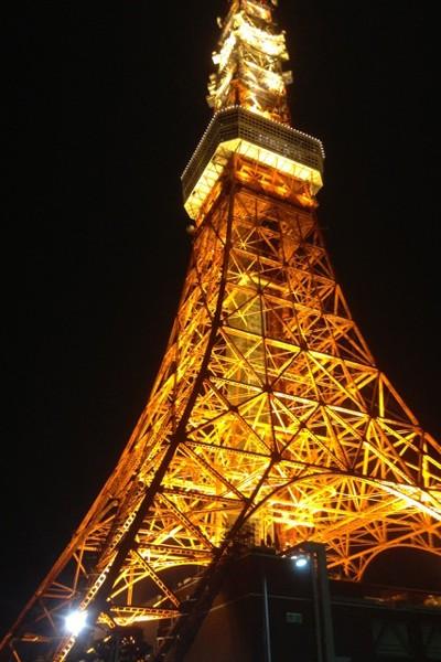 夜の東京タワーは幻想的