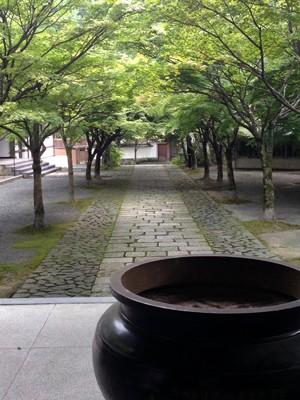 秋には紅葉のトンネルかできるそう(呑山観音寺)