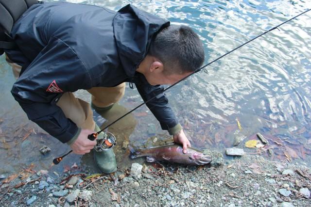 取材日に40センチの大物を釣る勝負強さを発揮!!