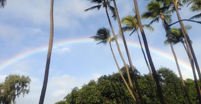 さらにきれいな虹が!