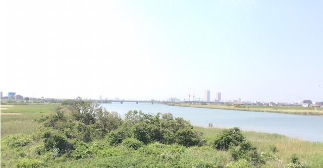 東京都西部〜神奈川県在住の方におすすめなのが「多摩川河川敷」。山側か海側か、どちらの方向に走るかで、違う景色を楽しめます