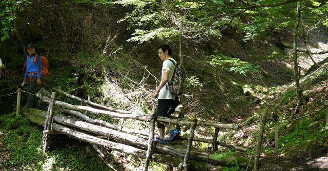 丸太で作られた橋を渡ることも
