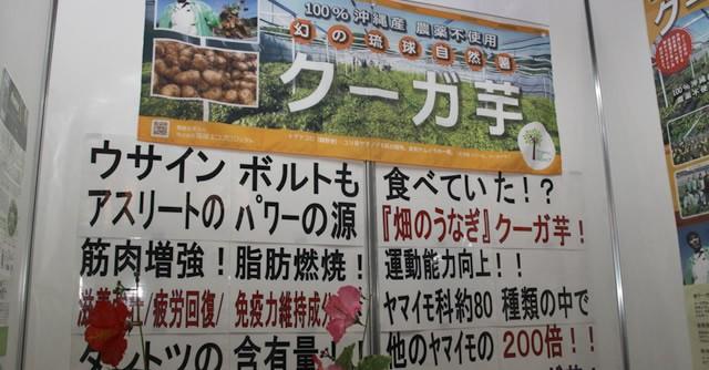 """""""幻の琉球自然薯""""クーガ芋、本格的な商品化はこれから"""