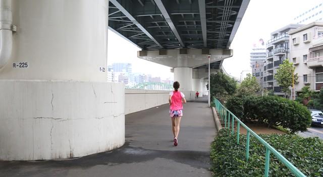 隅田川沿いの真上は高速道路、少しくらいの雨ならへっちゃら