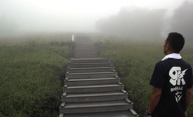 一面深い霧に覆われてしまっている