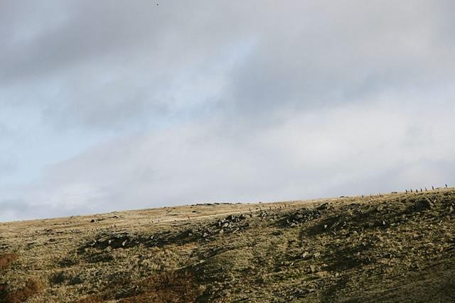 丘陵地の景色はキレイだが、なかなかタフなコースだった。