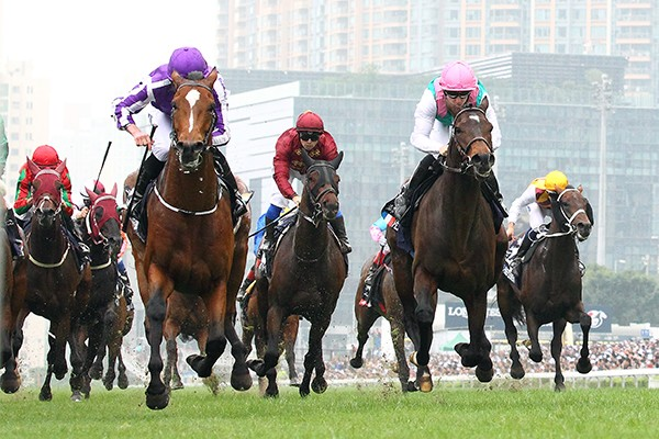 昨年はサトノクラウンに足元をすくわれての惜敗だったが、ここでの実績は申し分ないハイランドリール(前列左)。写真は2015年香港ヴァーズ。(C)森内智也