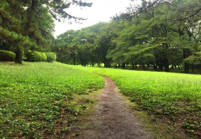 世田谷 砧公園