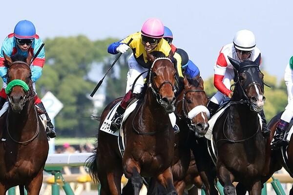 ワグネリアン騎乗の福永祐一(桃帽)が制した今年の日本ダービー、その舞台裏を1番人気ダノンプレミアムに騎乗した川田将雅(白帽)に聞いた