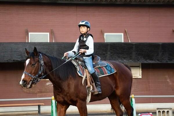 子どもたちを乗せて日々馬場を巡るテーオーグラジア。その穏やかな性格は福山ホースクラブの日常とぴったりと合っている。騎乗しているのは、競技会を目指して練習する小学5年生の佐藤央崇くん