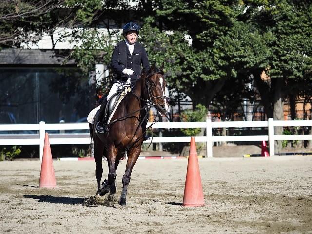 「人馬一体」がパラ馬術の理想形。馬を操るのではなく、馬の進みたいように進ませているような調和が必要だ
