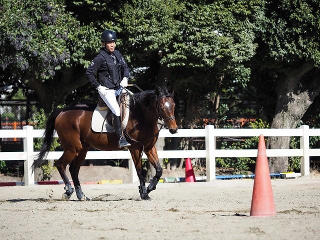 「正しい姿勢で、馬に正しい指示を伝えることが大切」と武井さんは語る