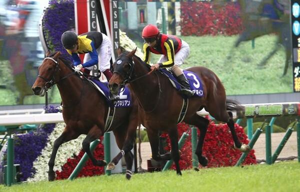 アルアインが大阪杯V、鞍上の北村友一はこれがうれしいJRA・GI初勝利となった