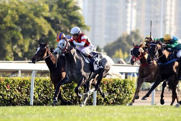 ウインブライト(白帽)が香港カップを勝利、春に続き香港2000mGIを制した