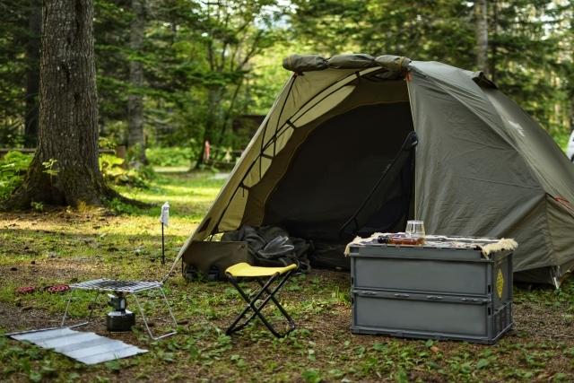 キャンプで後悔しないための虫対策