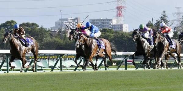 春のGIシーズン到来を告げる高松宮記念。競馬AI『VUMA』の本命は?