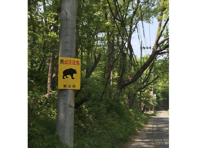 山でクマに出会ったら!? 野生動物の危険と対応を学ぼう
