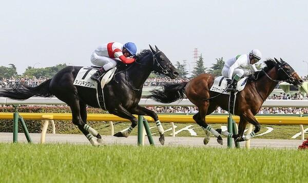 12頭立てと少頭数ながら好メンバーが揃った大阪杯。競馬AI『VUMA』の本命は?