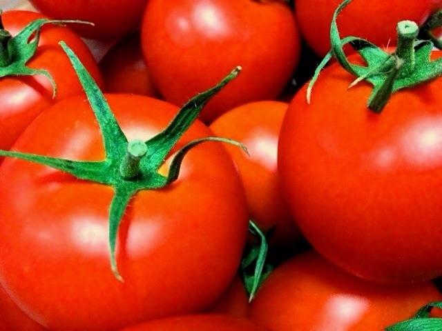 栄養ギッシリ!トマトの魅力&簡単アウトドアレシピ