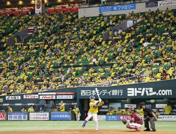 9月19日、政府によるイベント入場制限が緩和され開催されたプロ野球。慎重に、そして確実に前進してきた