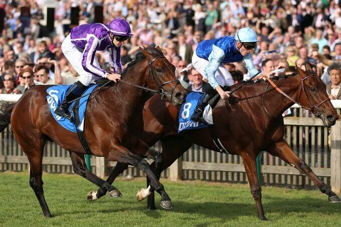 ネイブルの3連覇を阻んだA.ファーブル調教師の管理馬であるペルシアンキング(右)。