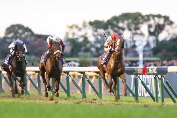 ジャパンカップや有馬記念へのステップレースとなる日曜の東京メイン・アルゼンチン共和国杯、競馬予想AI『VUMA』の本命は?(写真は19年ジャパンカップ)