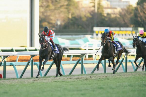 来年の3歳クラシックを占う一戦・ホープフルS、絶好調の競馬AI「VUMA」がイチオシする2歳馬は?(写真は昨年のホープフルS)