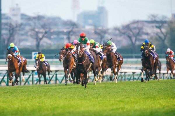 2020年のJRA競馬を締めくくるグランプリ有馬記念、絶好調の予想AI『VUMA』の最終結論に注目だ(写真は2019年有馬記念)
