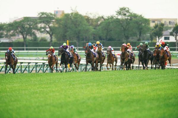 予想 東京 競馬