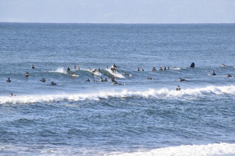 自粛 サーファー 木村拓哉、サーファーへ外出自粛呼びかけ「いい波があっても家にいよう!!」