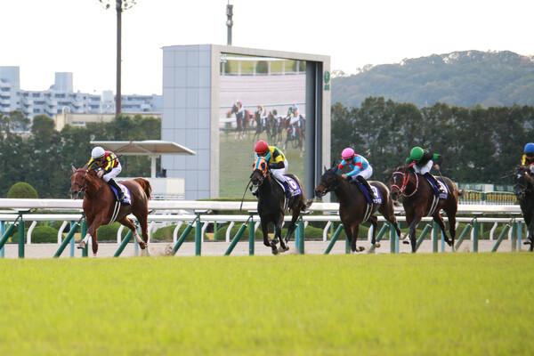 土曜の重賞は中山牝馬ステークスと阪神スプリングジャンプ、絶好調の競馬予想AI「VUMA」は今週も的中なるか
