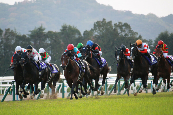 8週連続的中の競馬予想AI『VUMA』はダービー卿CTではどの馬を本命に推奨するのか、注目だ