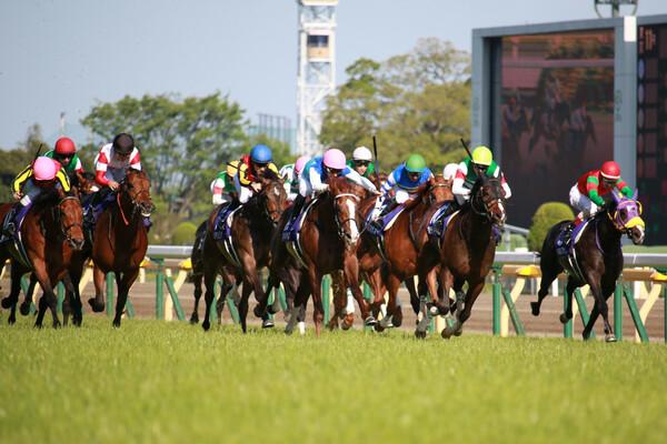 東京マイル頂上戦への切符をつかむと競馬AIが予想するのはどの馬だ?
