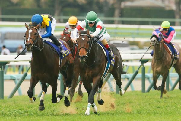 大混戦と下馬評の2021年皐月賞、11週連続重賞的中と絶好調の競馬AIはどの馬を本命に予想したのか
