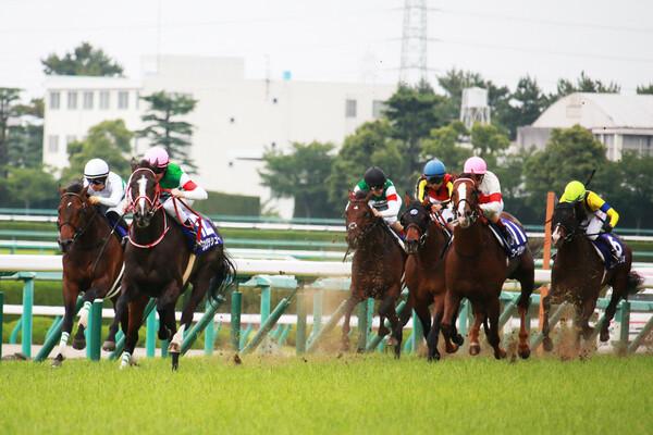 宝塚記念へのステップレースでもある鳴尾記念、GI馬が2頭出走するなか競馬予想AIの本命は?