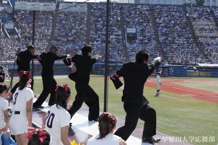 満員の神宮球場に響く早稲田大学応援部の「コンバットマーチ」。この姿は125年後も見られるのか?