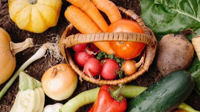オーガニック食の基礎を学び、生活に上手に取り入れよう!