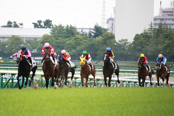 今週で夏競馬もいよいよラスト! 土曜の重賞・札幌2歳Sで競馬予想AIが本命に推す若駒は?